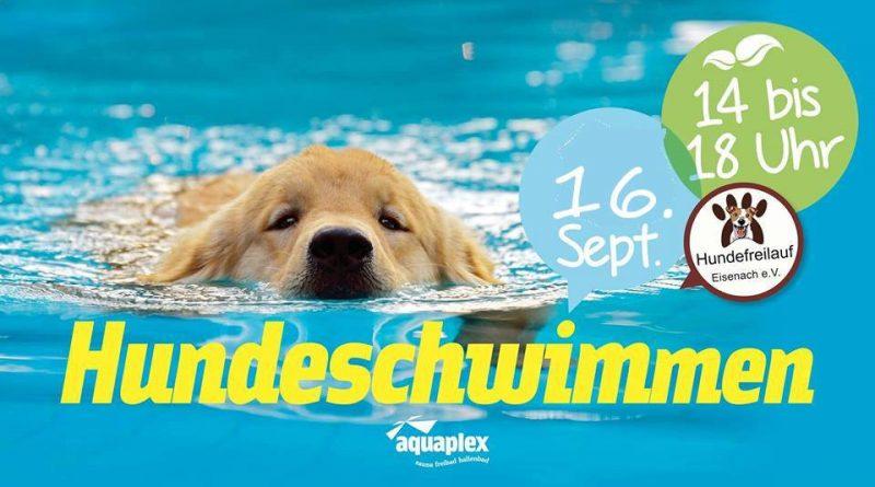 3. Eisenacher Hundeschwimmen