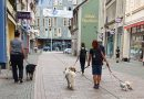 Eva Windisch erneut Gast des Hundefreilaufs